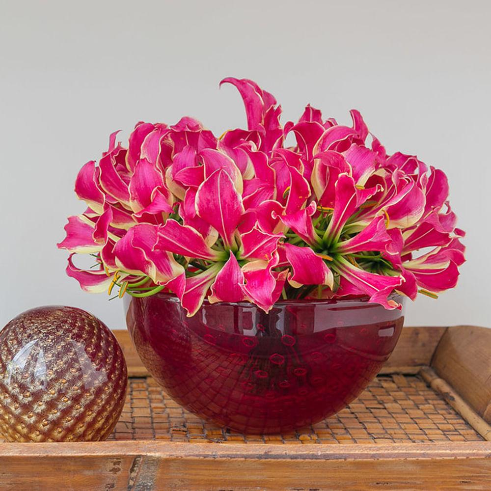 Bowl Tela Vermelho com Ouro Murano Cristais Cadoro